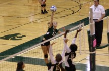 VVolleyball_action4