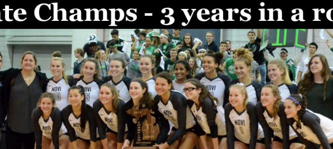 Home Page Picture – Volleyball